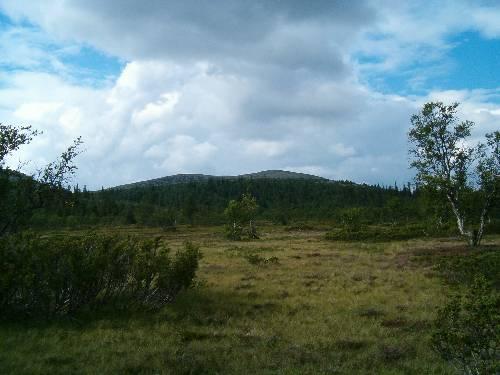 Från Röjkölen: mot Oxsjötoppen