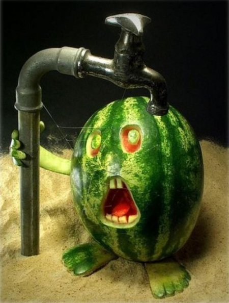 [Bild: Melon]
