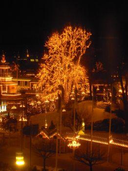 [Bild: Lisebergs ljusbeklädda 'urträd', senare]