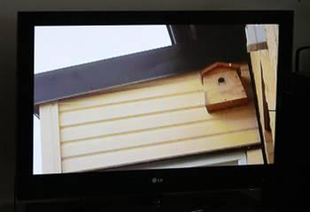 [Bild: Bild från Sony w350 kopplad till TV:n]