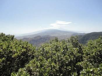[Bild: Utsikt, norra Teneriffa, Teide]