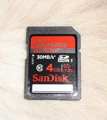 [Bild: Kameraminne: SanDisk Extreme HD Video SDHC 4GB Clas 10]