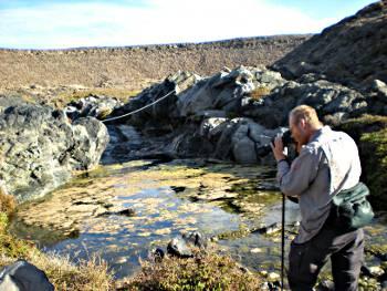 [Bild: Nisse fotograferar flicksländor, Barracon, El Puertito de los Molinos, Fuerteventura]