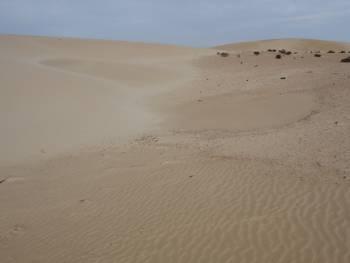[Bild.: Corralejo Sandöken, Fuerteventura utan mina linjer och text]