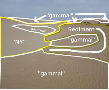 [Bild.: Corralejo Sandöken, Fuerteventura med mina linjer och text]