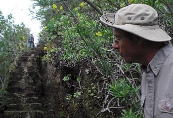 [Bild: Nisse kikar på trappor. Jardin Botanico Canario. Barracon de Guiniguada. Gran Canaria.]