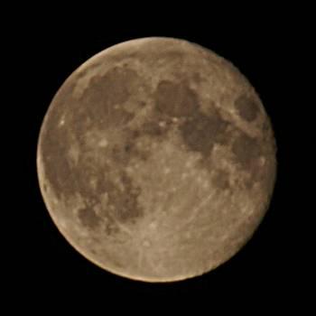 [Bild: Månen]