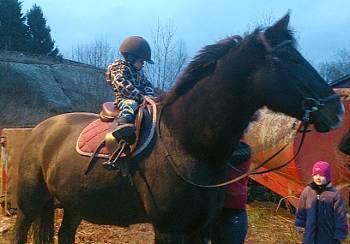 [Bild: Sixten på hästen Paja]