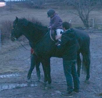 [Bild: Tova på hästen Paja]