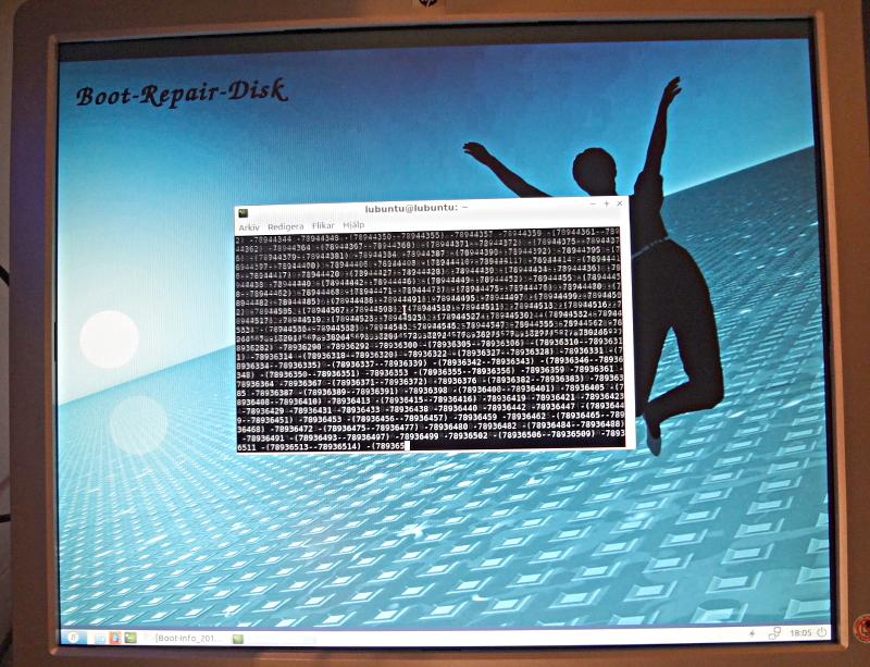 [Bild: Databild som visar återskapande av filsystem (ext4)]